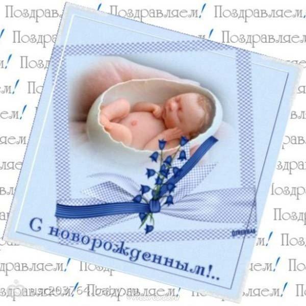 Поздравления с рождением племянника тете картинки, приколы