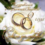 Бумажная свадьба открытка поздравление скачать бесплатно на сайте otkrytkivsem.ru