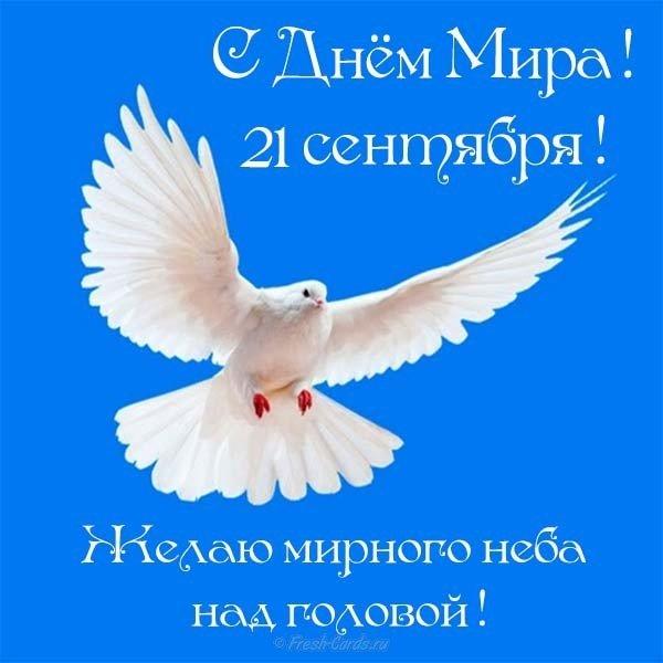 den mira pozdravlenie