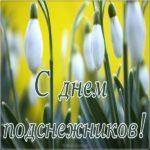 День подснежника фото скачать бесплатно на сайте otkrytkivsem.ru