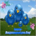 День птиц картинка для детей скачать бесплатно на сайте otkrytkivsem.ru