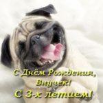 День рождения внука 3 года прикольная открытка скачать бесплатно на сайте otkrytkivsem.ru