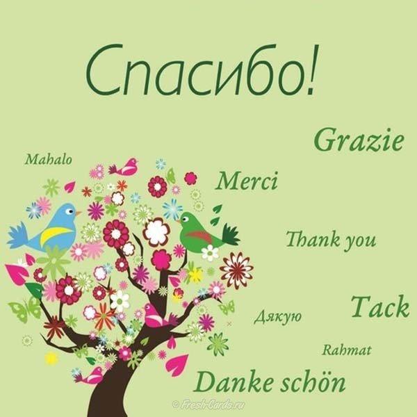 Открытка с благодарностью на английском языке