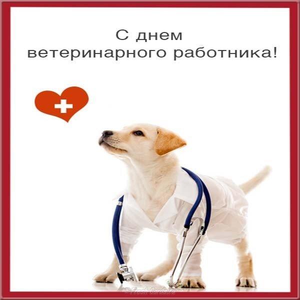 den veterinara otkrytka