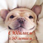 Фото открытка с юбилеем 50 скачать бесплатно на сайте otkrytkivsem.ru
