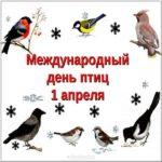 Картинка 1 апреля международный день птиц скачать бесплатно на сайте otkrytkivsem.ru