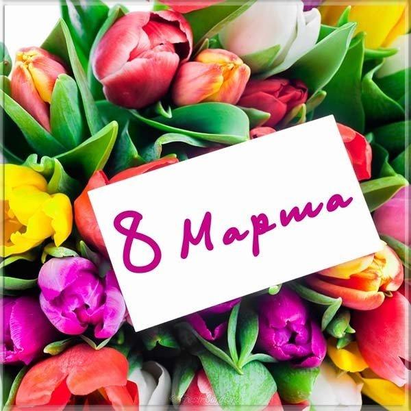 kartinka k marta tsvety