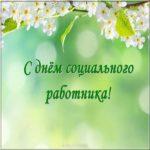 Картинка ко дню социального работника скачать бесплатно на сайте otkrytkivsem.ru