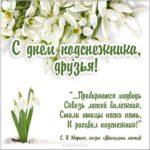 Картинка поздравление с днем подснежника скачать бесплатно на сайте otkrytkivsem.ru