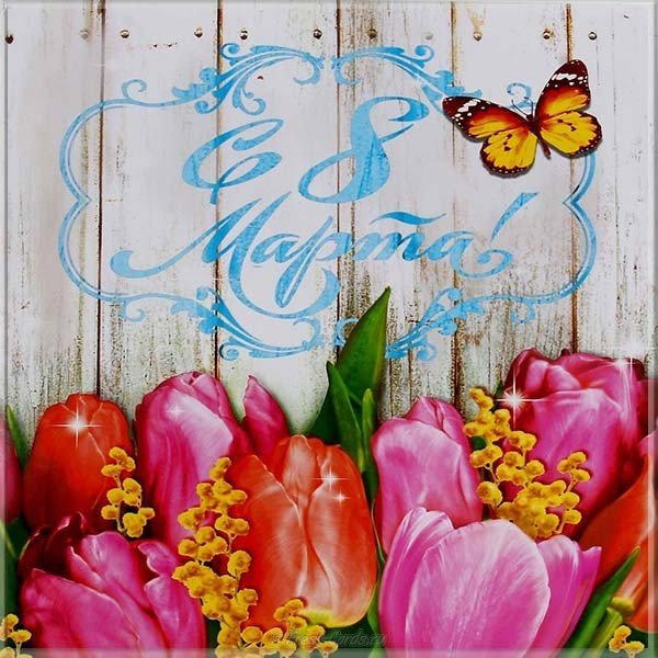 kartinka s marta tsvety