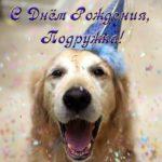 Картинка с днем рождения подруге прикольная скачать бесплатно на сайте otkrytkivsem.ru