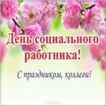 Картинка с днем социального работника коллегам скачать бесплатно на сайте otkrytkivsem.ru