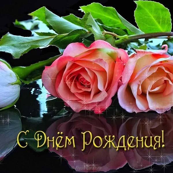 Красивая новая открытка с днем рождения женщине скачать бесплатно на сайте otkrytkivsem.ru