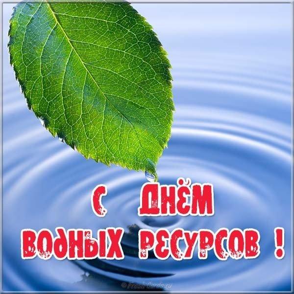 krasivaya otkrytka s dnem vodnykh resursov