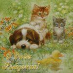 Красивая открытка с днём рождения с животными скачать бесплатно на сайте otkrytkivsem.ru