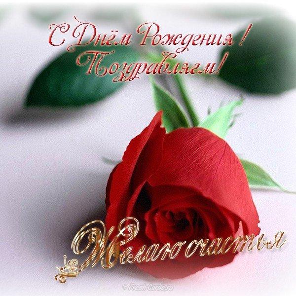 Красивая открытка с днём рождения учительнице скачать бесплатно на сайте otkrytkivsem.ru