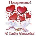 Красивая свадебная открытка скачать бесплатно на сайте otkrytkivsem.ru