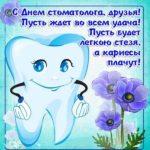 Международный день стоматолога поздравление картинка скачать бесплатно на сайте otkrytkivsem.ru