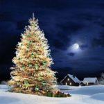 Новогодняя елка картинка обои скачать бесплатно на сайте otkrytkivsem.ru