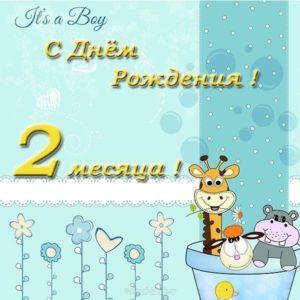 Открытка 2 месяца мальчику скачать бесплатно на сайте otkrytkivsem.ru