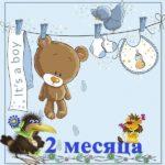 Открытка 2 месяца ребенку скачать бесплатно на сайте otkrytkivsem.ru