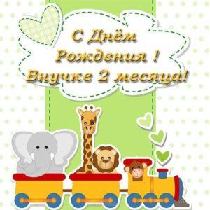 Открытка 2 месяца внучке скачать бесплатно на сайте otkrytkivsem.ru