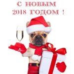 Открытка 2018 год собаки скачать бесплатно на сайте otkrytkivsem.ru