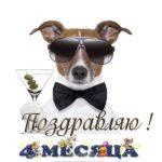 Открытка 4 месяца поздравление мальчику скачать бесплатно на сайте otkrytkivsem.ru