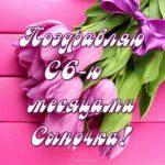 Открытка 6 месяцев сыночку скачать бесплатно на сайте otkrytkivsem.ru
