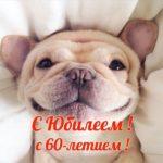 Открытка 60 юбилей скачать бесплатно на сайте otkrytkivsem.ru