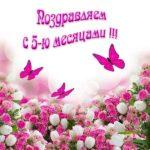 Открытка бесплатная 5 месяцев мальчику скачать бесплатно на сайте otkrytkivsem.ru