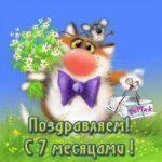 Открытка бесплатная на 7 месяцев мальчику скачать бесплатно на сайте otkrytkivsem.ru