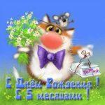 Открытка бесплатная с 5 месяцами мальчика скачать бесплатно на сайте otkrytkivsem.ru