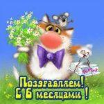 Открытка бесплатная с 6 месяцами мальчику скачать бесплатно на сайте otkrytkivsem.ru
