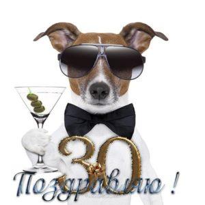 Открытка день рождения 30 лет скачать бесплатно на сайте otkrytkivsem.ru