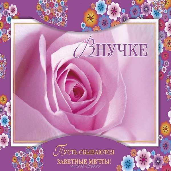 Открытка ко дню рождения внучки скачать бесплатно на сайте otkrytkivsem.ru