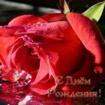 Открытка ко дню рождения женщине скачать бесплатно на сайте otkrytkivsem.ru
