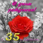 Открытка красивая поздравительная с днем рождения 35 лет скачать бесплатно на сайте otkrytkivsem.ru