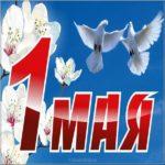 Открытка май скачать бесплатно на сайте otkrytkivsem.ru