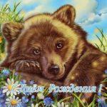 Открытка медведь с днем рождения скачать бесплатно на сайте otkrytkivsem.ru