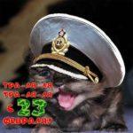 Открытка на 23 февраля для моряков скачать бесплатно на сайте otkrytkivsem.ru