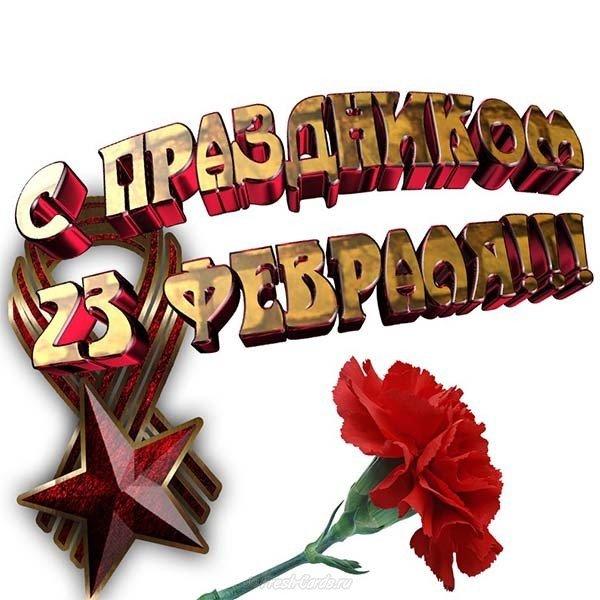 Открытка на 23 февраля гвоздики скачать бесплатно на сайте otkrytkivsem.ru
