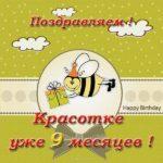 Открытка на 9 месяцев девочке скачать бесплатно на сайте otkrytkivsem.ru