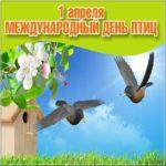 Открытка на день птиц скачать бесплатно на сайте otkrytkivsem.ru