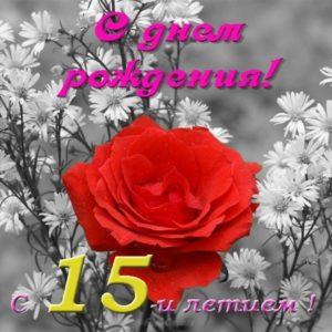 Открытка на день рождения 15 лет девочке скачать бесплатно на сайте otkrytkivsem.ru