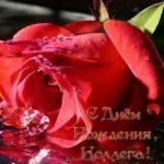 Открытка на день рождения коллеге женщине скачать бесплатно на сайте otkrytkivsem.ru