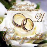 Открытка опаловая свадьба скачать бесплатно на сайте otkrytkivsem.ru