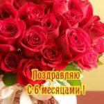 Открытка полгода девочке скачать бесплатно на сайте otkrytkivsem.ru