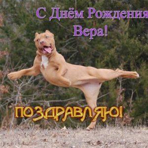 Открытка-поздравление прикольная с днем рождения Вере скачать бесплатно на сайте otkrytkivsem.ru