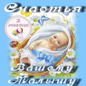 Открытка поздравление с 2 месяцем мальчика скачать бесплатно на сайте otkrytkivsem.ru